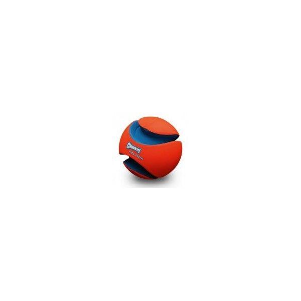 Ballon Chuckit! (Kick Fetch)